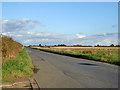 TL3568 : Fen Drayton Road by Robin Webster