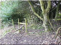 SE0927 : Stile on FP401 at northwest side of a thick hedge by Humphrey Bolton