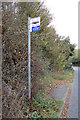 TM1348 : Bus Stop on Old Ipswich Road by Adrian Cable
