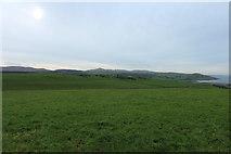 NX0983 : Farmland on Mill Hill by Billy McCrorie