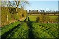 SE7756 : Chalkland Way near Acre Plantation by Ian S