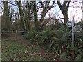 SM9129 : Priskilly Forest bridleway by Alan Hughes