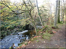 J3532 : The Shimna River above Ivy Bridge by Eric Jones