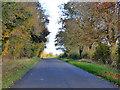 TL1347 : Lane towards Moggerhanger by Robin Webster