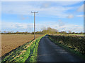 TL6770 : On Badlingham Road in autumn by John Sutton