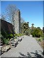NX0942 : The terrace next to the castle ruin, Logan Botanic Garden by Humphrey Bolton