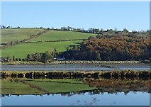 J1021 : The slopes on the north side of the Newry River reflected in the still waters of the Newry Ship Canal by Eric Jones