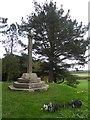 SS9700 : Fungi at the foot of the memorial cross, Killerton Garden by David Smith