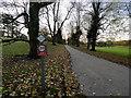 SD5375 : Driveway to Dalton Hall by David Dixon