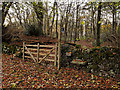 SD5475 : Footpath into Harry Wood by David Dixon