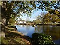 SO8142 : Village pond, Hanley Swan by Philip Halling