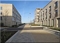 TL4259 : Eddington: Ridgeway by John Sutton