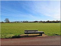 TL4259 : Eddington cricket field by John Sutton