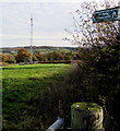 SO3826 : Telecoms mast near Pen-y-lan Farm, south Herefordshire by Jaggery
