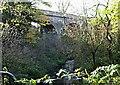 SK5360 : Drury's Dam Viaduct, Mansfield, Notts. by David Hallam-Jones