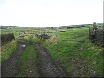 SE0028 : Dike Lane, Wadsworth by Humphrey Bolton