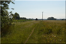 SP4610 : Thames Path by N Chadwick