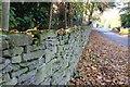 TF0913 : Dry stone wall by Bob Harvey
