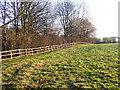 NZ3045 : Wooden fence alongside wooded gorge by Trevor Littlewood