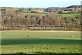 SU8395 : Northbound Chiltern Railways train north of West Wycombe by Robin Webster