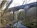 SK1373 : Railway viaduct, River Wye by Dave Dunford