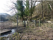 SK1273 : Footpath junction above Chee Dale by Dave Dunford