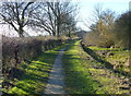 SK6732 : Towpath along the disused Grantham Canal by Mat Fascione