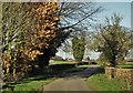 SE7824 : On Fox Lane looking north to Laxton by Neil Theasby