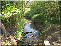 SJ4552 : View downstream from Stretton Mill bridge by Stephen Craven