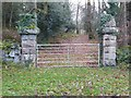 SO5104 : Gate piers near Cleddon Hall by Philip Halling
