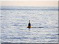 O3134 : Dublin Bay, North Burford Cardinal Mark by David Dixon