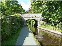 SJ2442 : Bridge 41 at The Sun Inn, Trevor by Richard Law