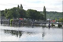 SU8586 : Marlow Weir by N Chadwick
