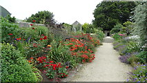 S8665 : Altamont Gardens, Co Carlow - flower borders by Colin Park