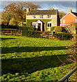 SO3927 : Ivy-clad house in Ewyas Harold by Jaggery