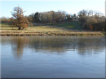 SO8843 : The Park Seat  viewed across Croome River by Philip Halling