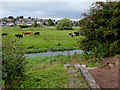 SJ9422 : The River Penk and flood plain near Baswich, Stafford by Roger  Kidd