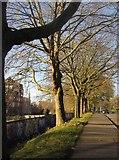 ST5973 : Castle Street, Bristol by Derek Harper