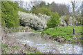 SP3465 : Blackthorn in flower at a bend of the river, Newbold Comyn Park, Leamington by Robin Stott