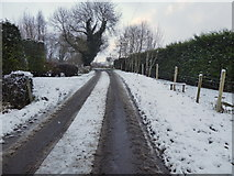 H4277 : Snow along Tully Road by Kenneth  Allen