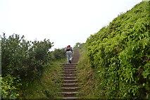 SX4850 : Steps, South West Coast path by N Chadwick