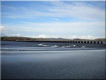 SD4578 : Kent estuary, Arnside (3) by Richard Vince