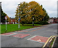 SD5904 : Early autumn colours, Bryn Street, Ince by Jaggery