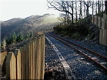 SN7377 : Vale of Rheidol Railway towards Devil's Bridge by John Lucas