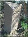 SJ5953 : Old Milepost by J Higgins