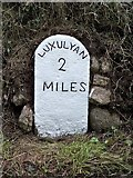 SX0360 : Old Milestone by Ian Thompson