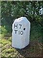SW7234 : Old Milestone by Ian Thompson