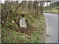 SK2155 : Old Milestone by the B5056, north of Nut Wood by Dave Robson