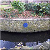 TL0549 : Blue plaque for John Bunyan, Bedford by Robin Webster