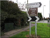 ST0981 : Virgin Media telecoms cabinet and direction signs, Bronllwyn, Pentyrch by Jaggery